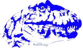 Dinosaurus, Dino T-Shirt Kollektion im Kekeye Dots Design. Tyrannosaurus Rex!